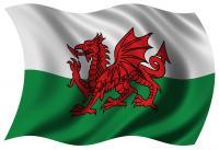 Cyhoeddiadau Cymraeg CFfC